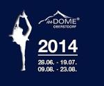 Logo iceDome 2014